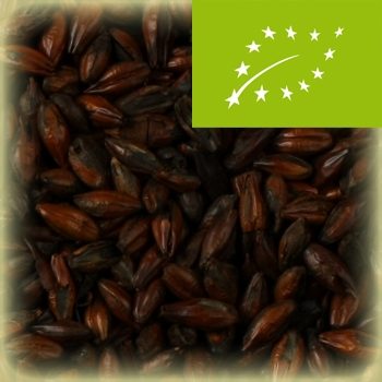 WEY Chocolate Wheat (ØKO) - 25 kg